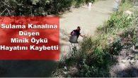 Sulama Kanalına Düşen Minik Öykü Hayatını Kaybetti